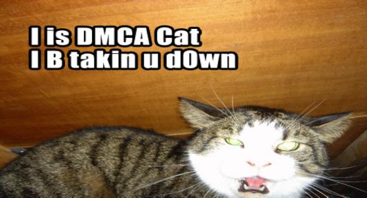 21_dmca_cat