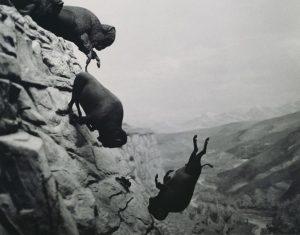 9_inch_400_dpi_Wojnarowicz_1988_89_Untitled_Falling_Buffa0